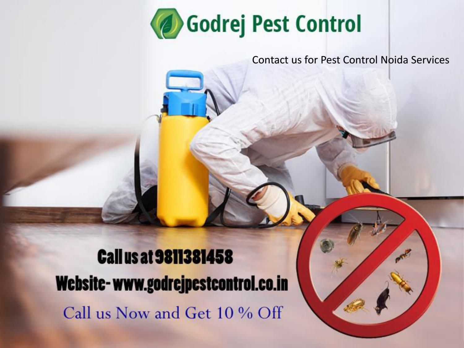 Contact Us For Pest Control Noida Services 9811381458 Pest Control Pest Control Services Contact Us
