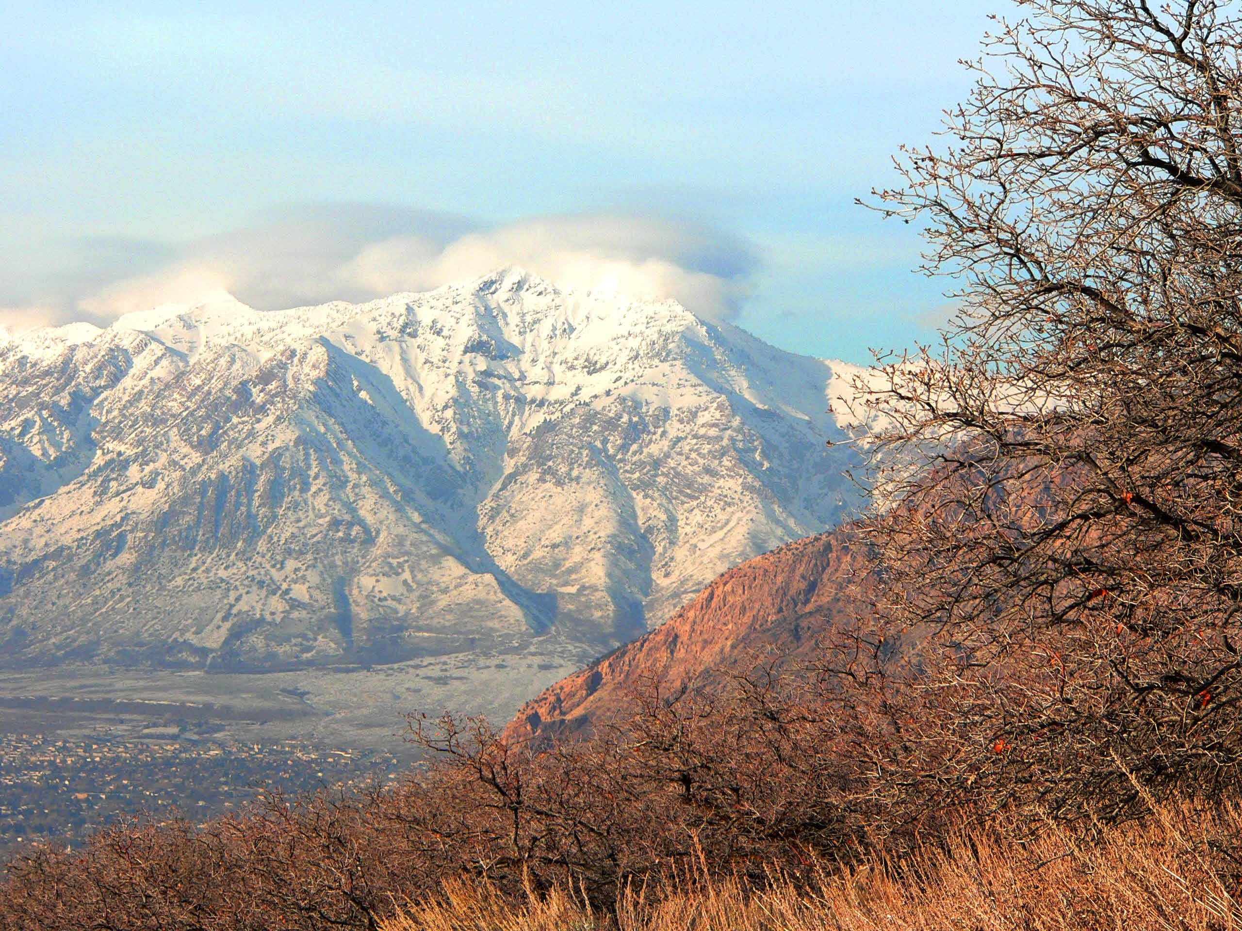 Wowcheck out this view of Mount Ben Lomond Mountain in