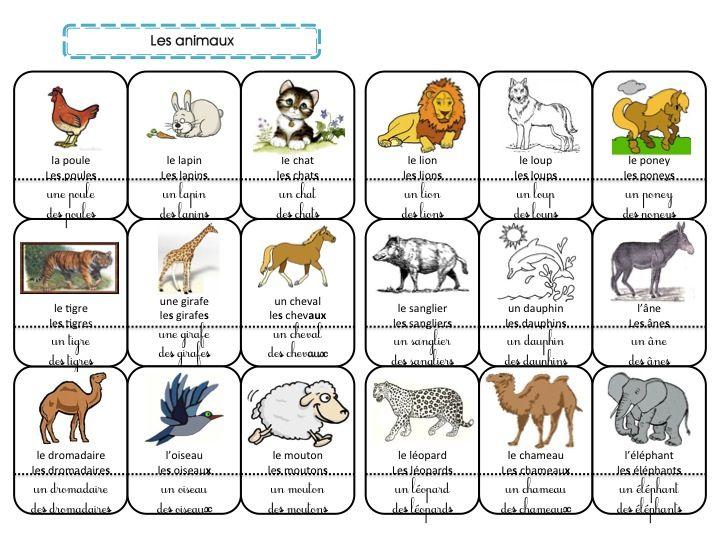 Bien-aimé Cahier de mots : les animaux | Boîte à mot | Pinterest | Cahier  HV23