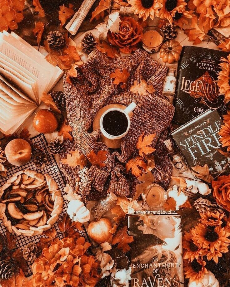 """������ ������� on Instagram: """"73 days until Halloween! � PC: @thereaderandthechef . . {tags} #halloween #fall #fallaesthetic #autumn #photography #books #coffee"""""""