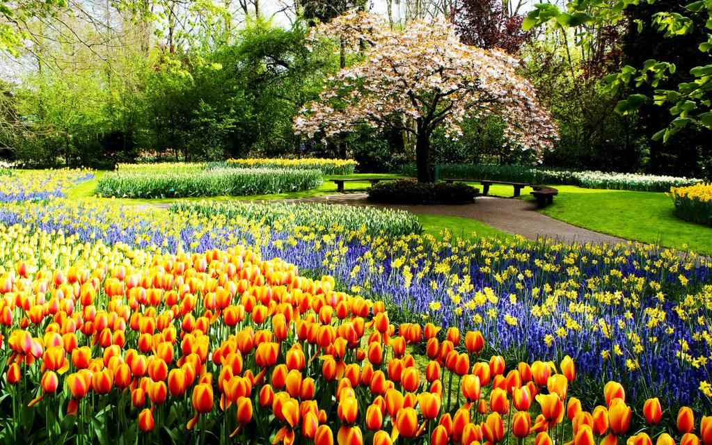 Paulo Roberto On Amazing Gardens Naturalistic Garden Spring Garden Flowers
