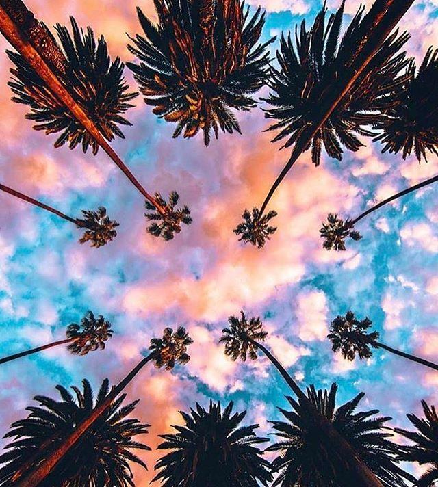 Cotton Candy Skies Taramtominaga Tara Tominaga