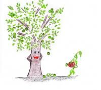 Wykorzystanie w uprawach ekologicznych allelopatycznych właściwości roślin