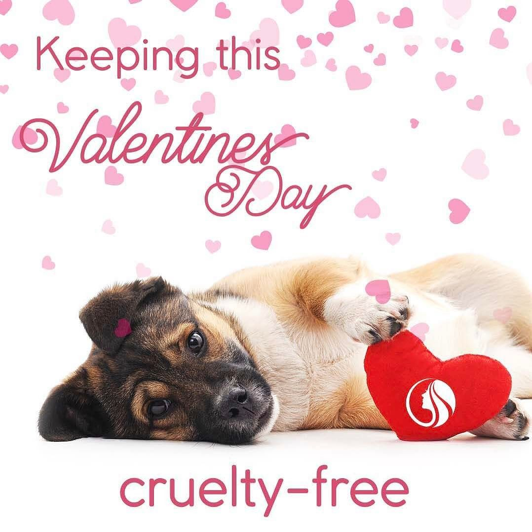 always crueltyfreebeauty Showing love to all this