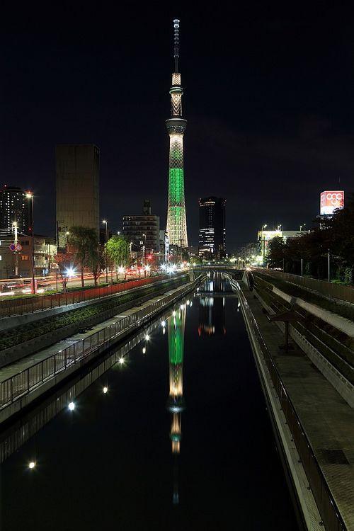 東京スカイツリー」のクリスマス特別ライトアップがはじまりました。ククリスマスの12月25日までの間、今までの「粋」と「雅」の他に「シャンパンツリー」「ホワイトツリー」「冬粋」「冬雅」「キャンドルツリー」の5種類が追加され、世界一の高さのクリスマスツリーとなります。  撮影:中谷幸司月
