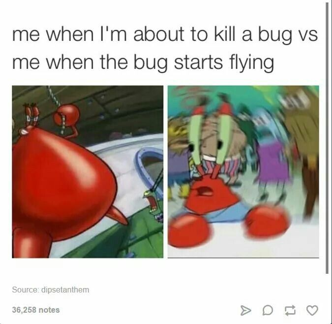 Mr Krabs Meme With Images Funny Relatable Memes