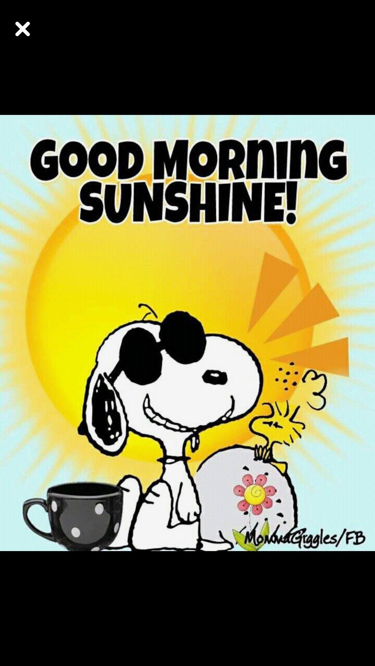 Pin Von Bine Auf Peanuts Morgen Memes Guten Morgen