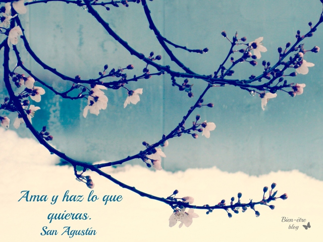 Bien-être | El encanto de la vida cotidiana: Frases de la semana, Citas para pensar, frases célebres http://bienetreblog.blogspot.com.es/