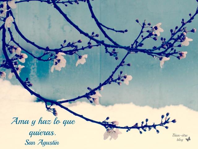 Bien-être   El encanto de la vida cotidiana: Frases de la semana, Citas para pensar, frases célebres http://bienetreblog.blogspot.com.es/