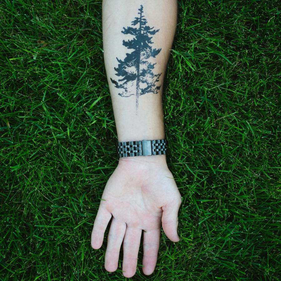 Forearm Pine Tree Tattoo Girls tattooideaslive.com #plant #forearm ...