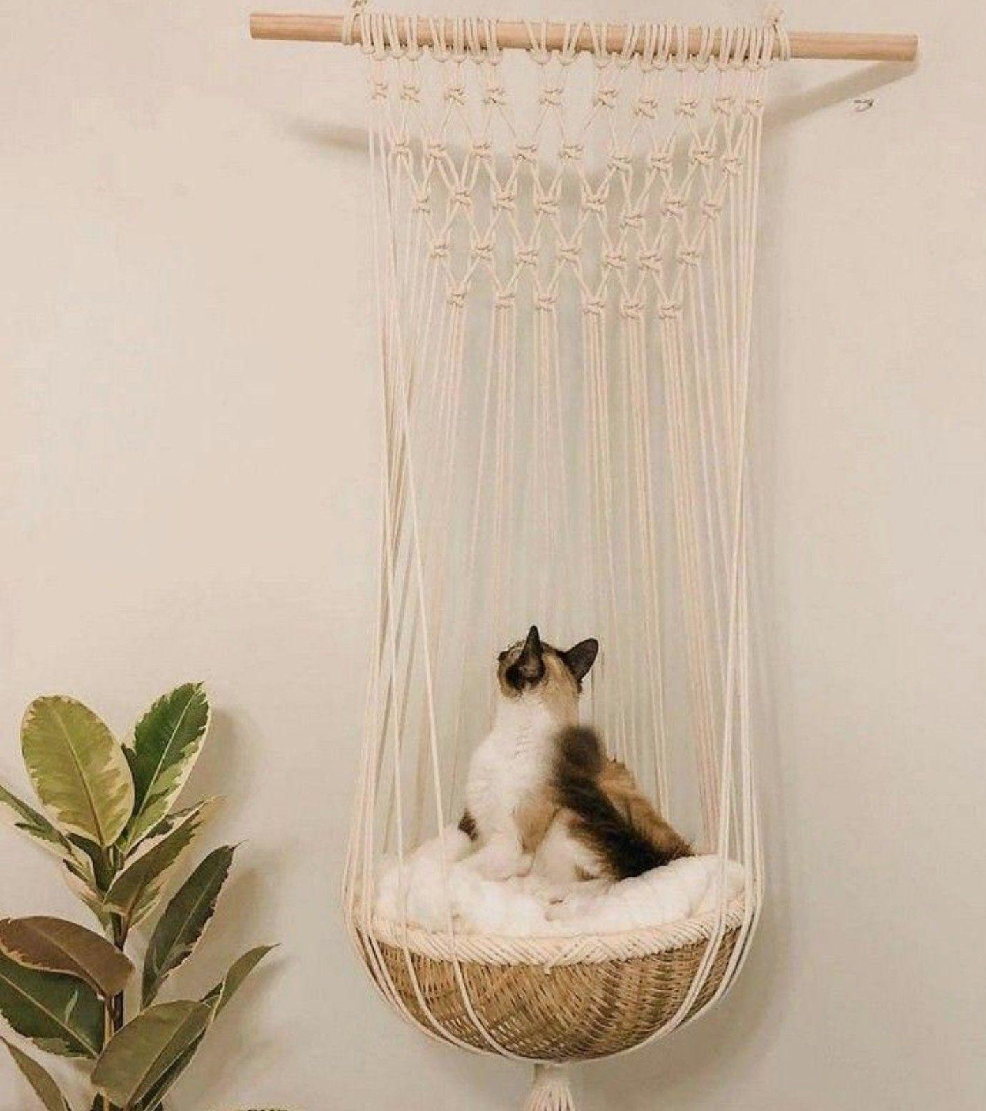 Macramé Chambre à thème chat, Mobilier pour chat