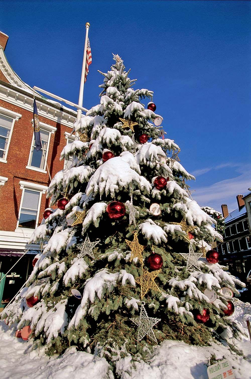 Pin on Seasonal & Christmas