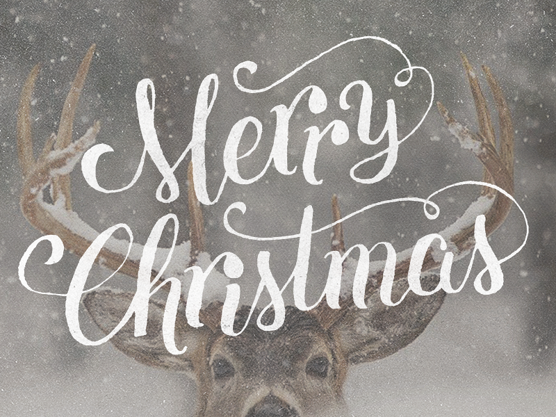 Merry Christmas, y'all! Merry christmas calligraphy