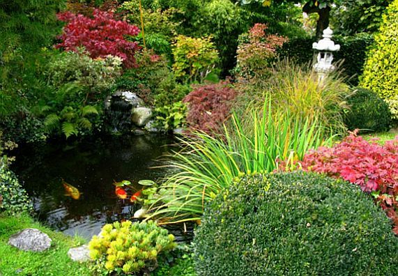 Japanischer garten gestaltungsideen obi ratgeber for Gartenteich gestaltungsideen