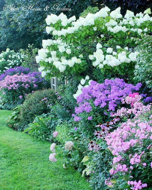 Struiken Met Bloemen Voor In De Tuin.Mooi Volle Hoge Wand Van Struiken En Bloemen Tuintje