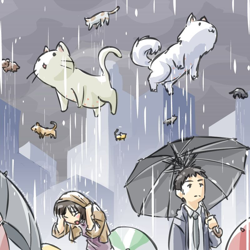Raining Cats And Dogs By Johnsu Deviantart Com With Images