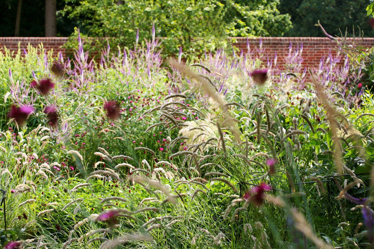 Marcus Barnett Studio - Hampshire | Garden design, Garden ...