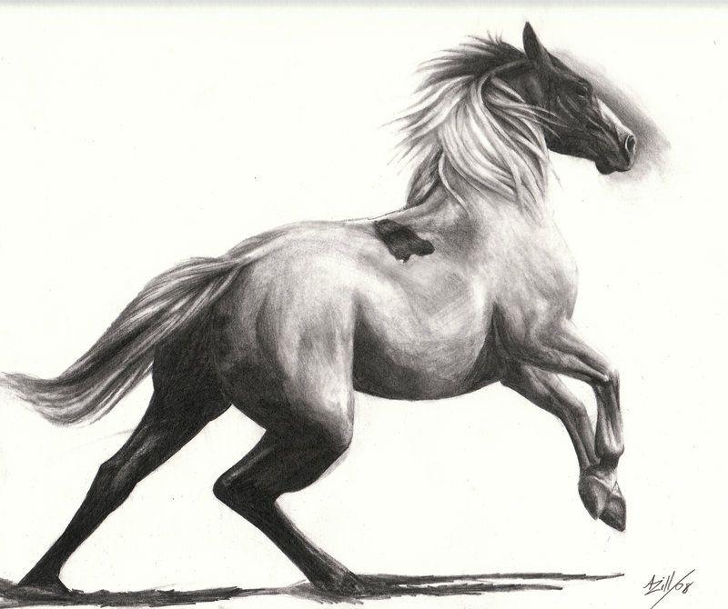 Horses running drawing - photo#19