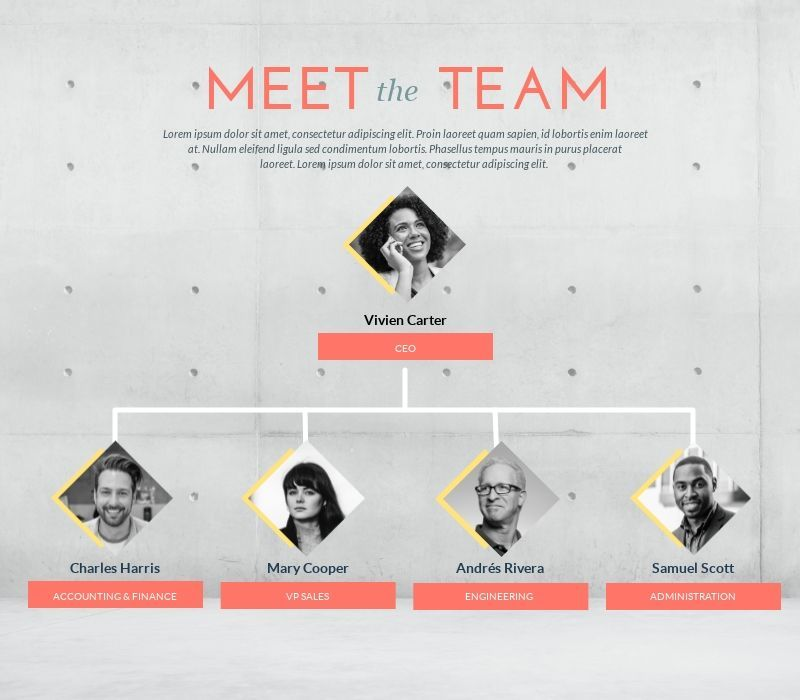 Organizational Chart Template To Visualize Your Teams Infographics Visualization Organizational Chart Design Organizational Chart Infographic Design Template