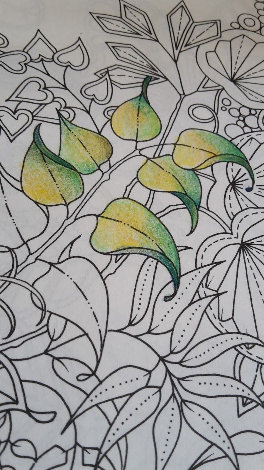 It Also Looks Like The Pencils Do Well On Different Types Of Paper My Old Bruynzeel Set Very In Secret Garden Colouring Book And