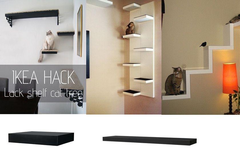 12 geniale ikea hacks speziell f r deine katzen die du nicht verpassen solltest seite 10. Black Bedroom Furniture Sets. Home Design Ideas