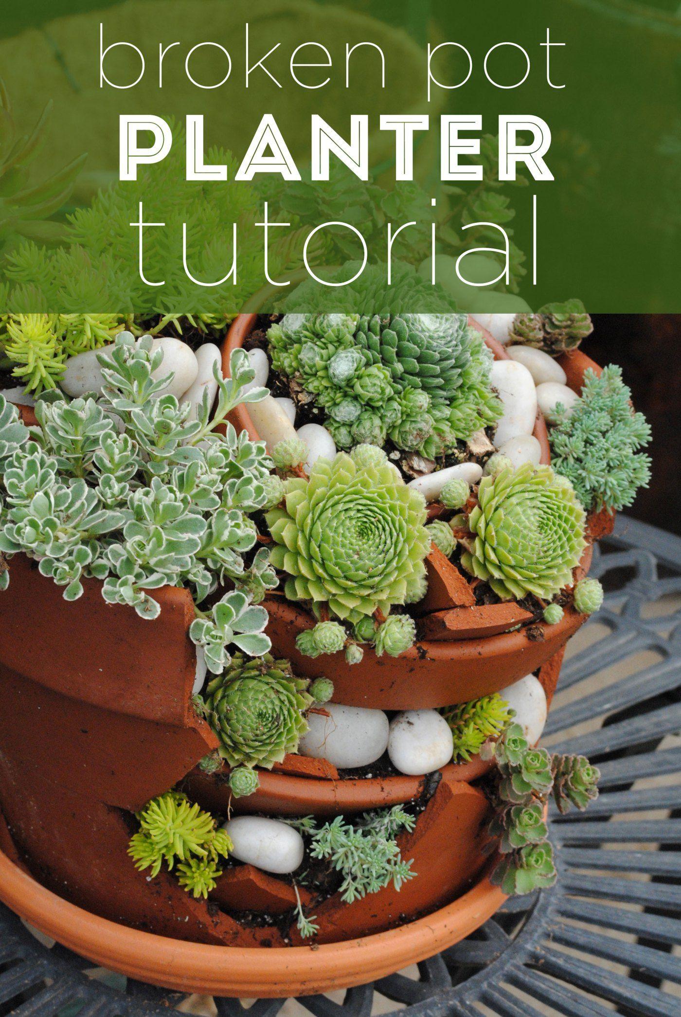 Broken pot planter tutorial succulent pots planter pots succulents garden garden planters