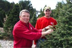 Steigerwaldt Christmas Trees Tomahawk Wi Christmas Tree Farm Christmas Tree Tree