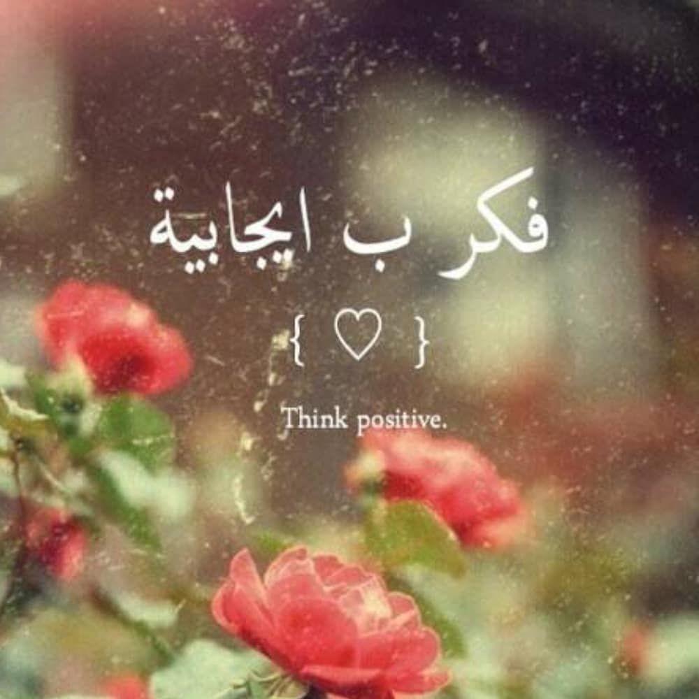 Watch The Best Youtube Videos Online صباح الخير يا أعزائي اتمني لكم قضاء يوم جميل ك Islamic Inspirational Quotes Arabic Love Quotes Arabic English Quotes