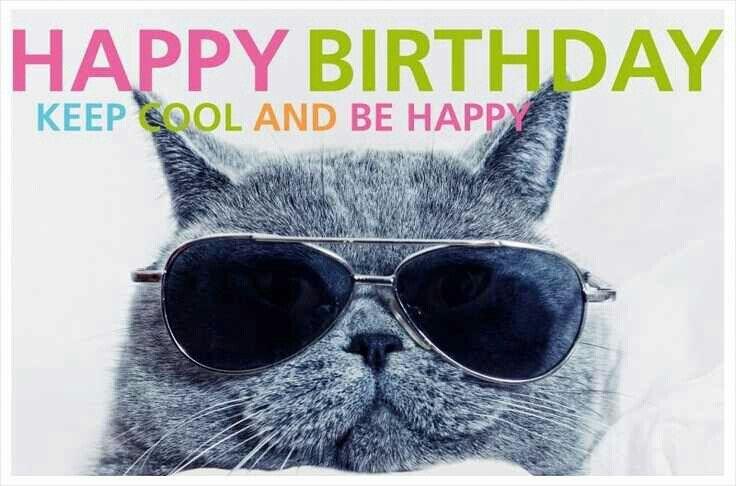 Happy Birthday Cool Cat In Sunglasses Postcard Zazzle Com