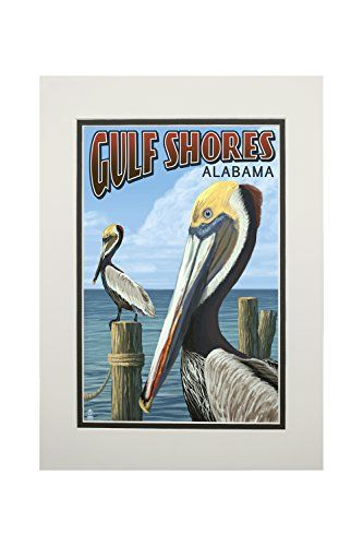 Availibility For Sunrays Gulf Shores Al Vacation Rental: Brown Pelican (11x14 Double-Matted