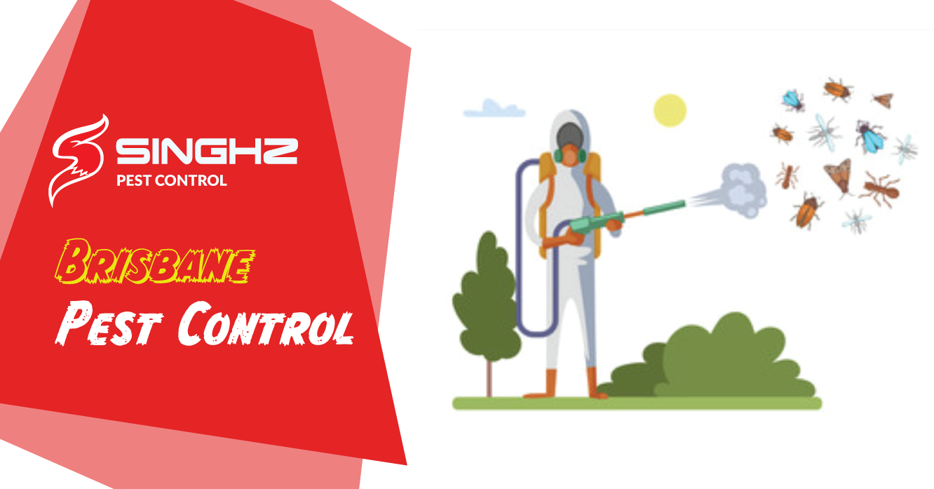 We Are Brisbane Based Pest Management Company That Use Only Eco Friendly Products That Are Secure To Use Aro Pest Control Pest Control Services Pest Management