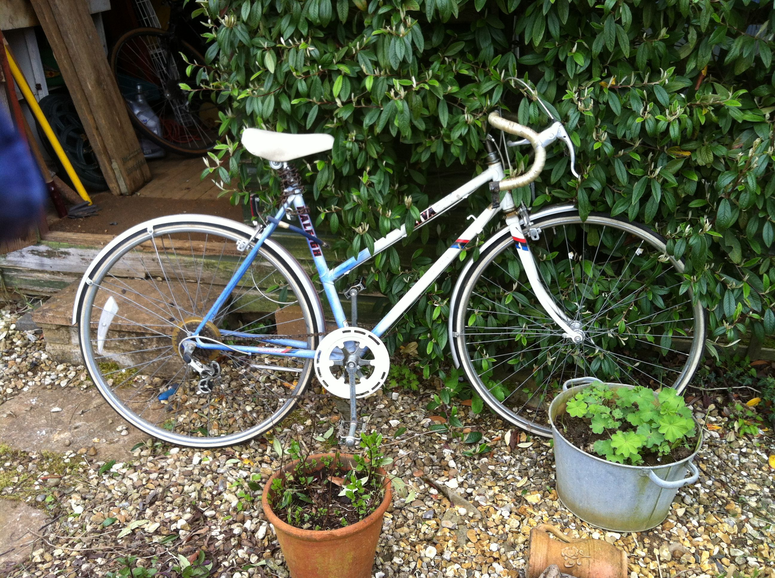 New bike I acquired today for free! It's a Raleigh Riva and from research I quickly undertook, it's probably not far off being as old as I am. Husband reckons it should scrub up alright.