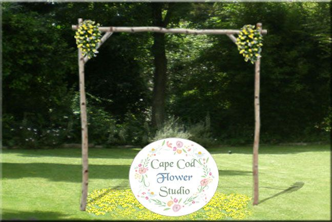 We Offer A White Birch Wedding Arch Rental For Your Cape Cod Wedding With Images Birch Wedding Arch Wedding Arch Rental Wedding Arch