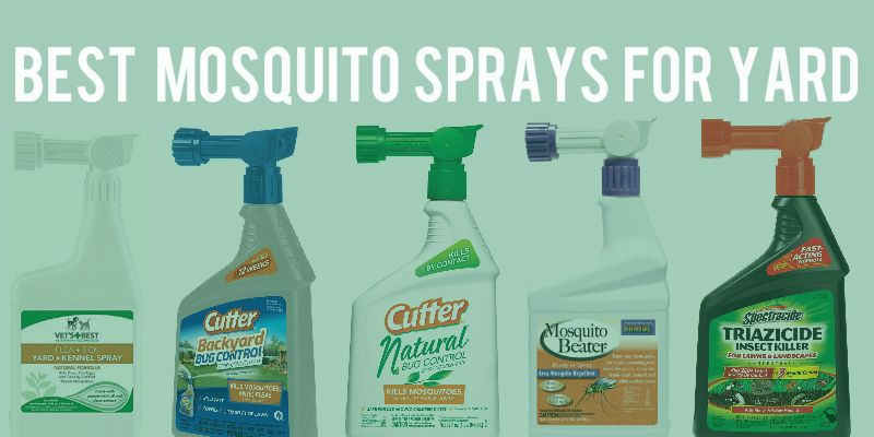 If You Are Looking For The Best Mosquito Spray For Yard, Then You Wonu0027