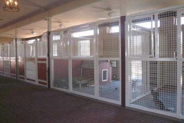 Pin By Steve Lewellen On Barn In 2020 Dog Kennel Designs Horse Stalls Dog Kennel