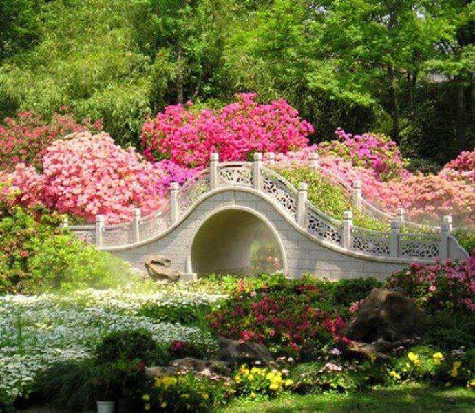 Garden Designing Another Creative Field To Join Pinterest - chinesischer garten brucke