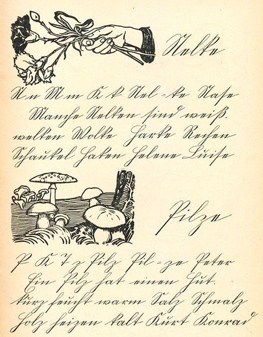 schlimbachs fibel 1909 abc schrift deutsche schrift und schreibschrift. Black Bedroom Furniture Sets. Home Design Ideas