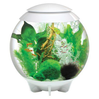 BiOrb by Oase Halo 16 Gallon Aquarium - 45761