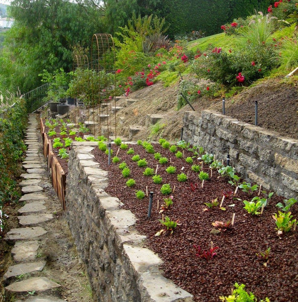 Raised Bed Retaining Wall: Hillside Garden Ideas Landscape Traditional With Retaining