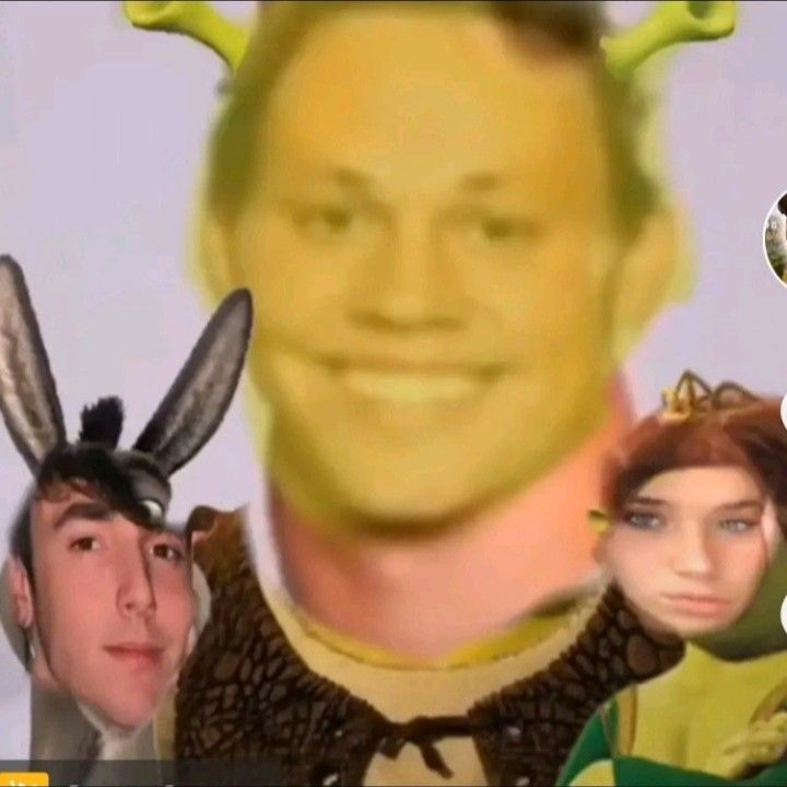 Noah Beck Photo Shrek Version Noah Meme Funny Profile Pictures Mood Pics