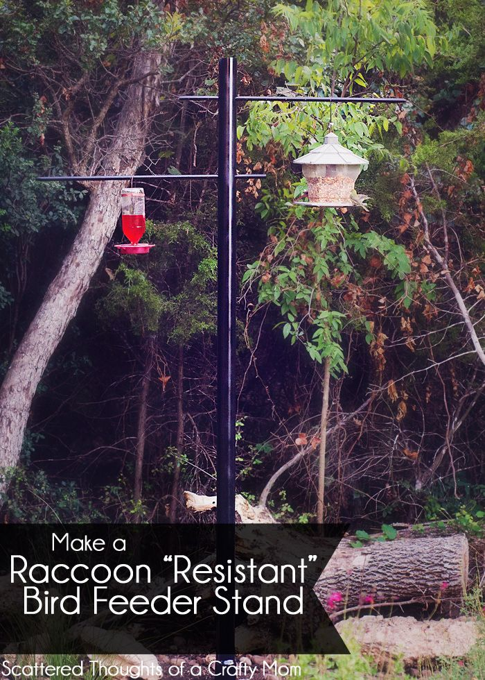 """How to Make a Raccoon """"Resistant"""" Bird Feeder Stand"""