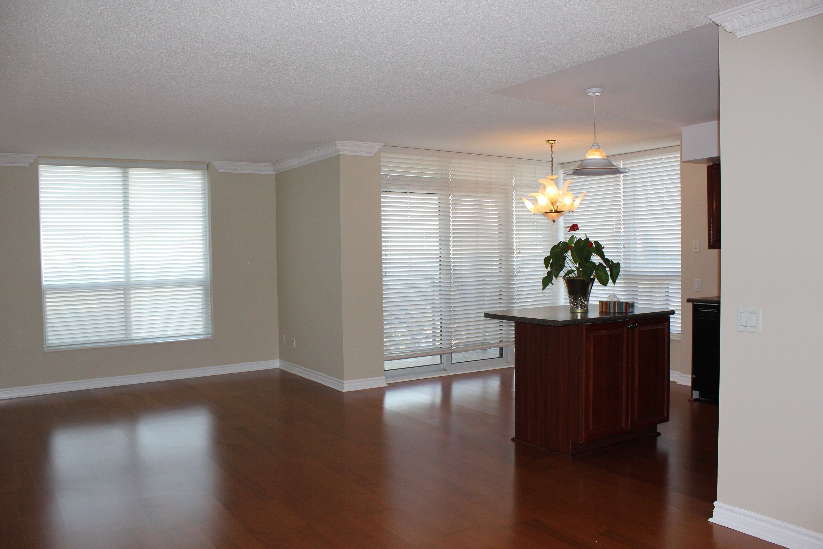 Looking For Your Dream Rental Apartment? The Unit 2