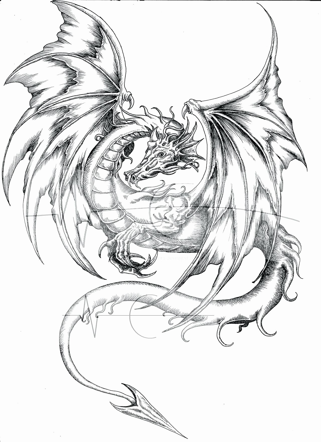 Pin Na Doske Dragon Coloring Pages For Kids