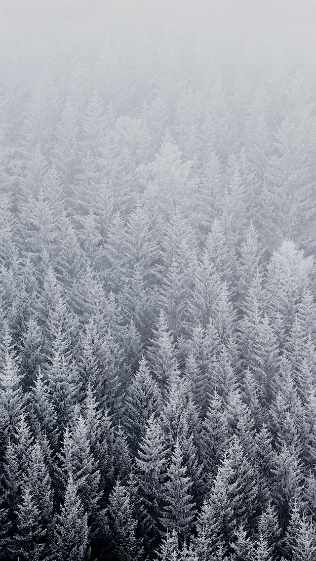 Ios 8 16 Iphone Wallpaper Winter Winter Wallpaper Ipad Wallpaper