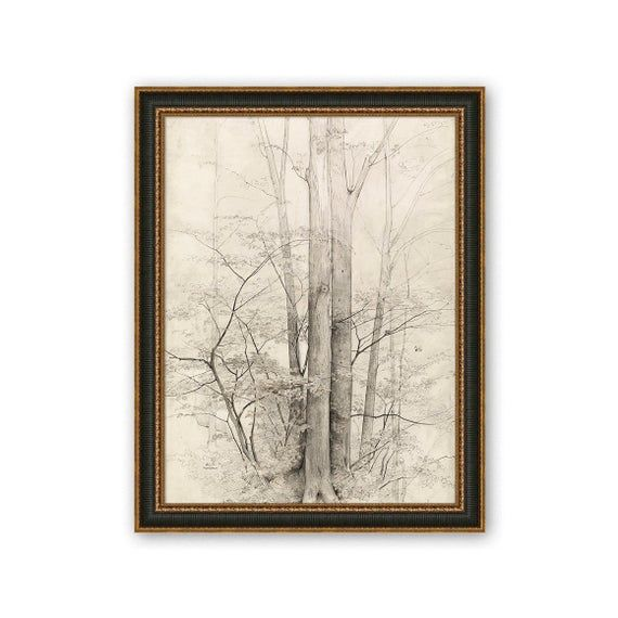 Heinrich Dreber,A Stand of Trees,Graphite pencil tree sketch, black tree, tree painting sketch,printable art,antique painting,printable wall