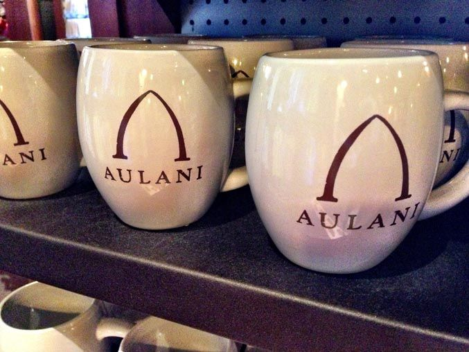 15 Things You Didn't Know About Aulani #disneycoffeemugs