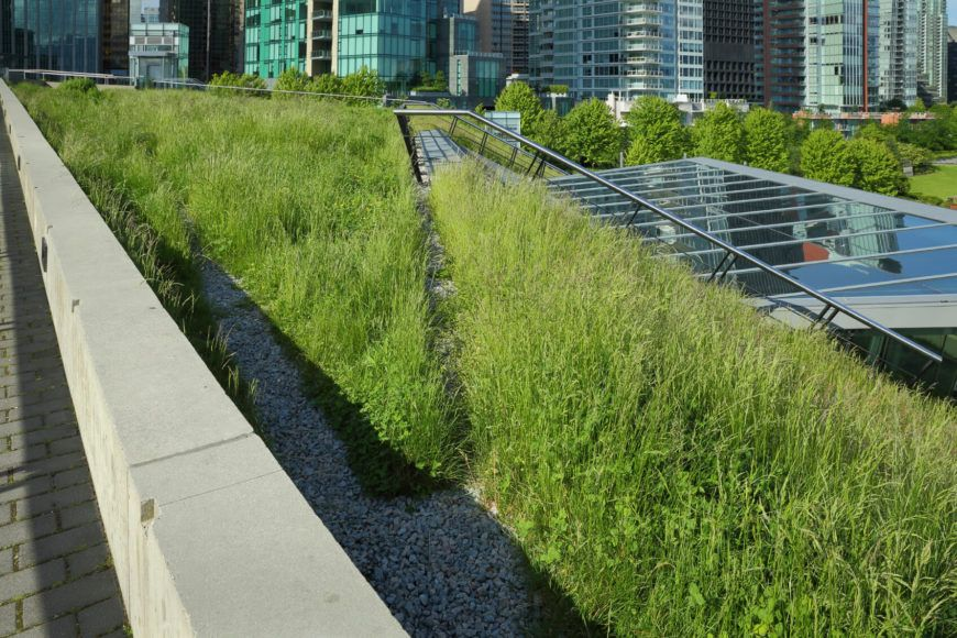 25 Amazing Buildings With Green Roof Designs Pictures Green Roof Green Roof Design Sustainable Architecture