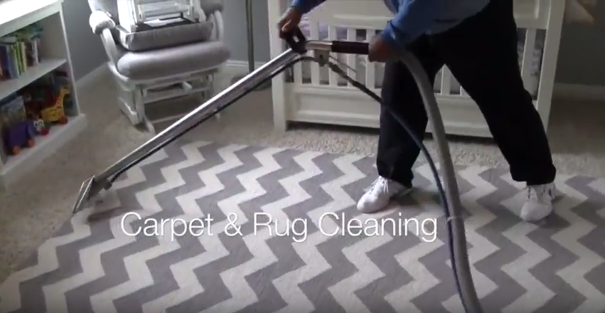 Green Carpet Cleaning Green Carpet Cleaning Cleaning Service Professional House Cleaning