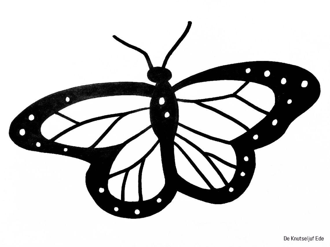 Kom Je Tikkertje Spelen Met Vera De Vlinder Een Huis Voor Harry Vlinders Prentenboeken Knutselen Met Peuters