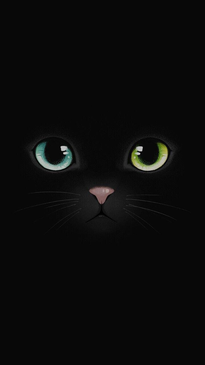 Black cat wallpaper uploaded by Cristy Miau on We Heart It